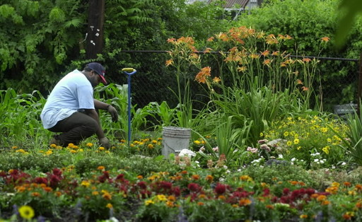 Inspiration: An Urban Garden in Baltimore